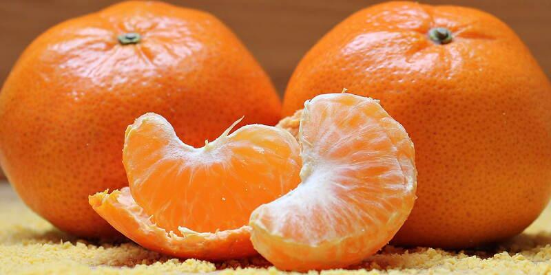 ¿qué es el sistema de appcc? la limpieza en la indústria alimentária
