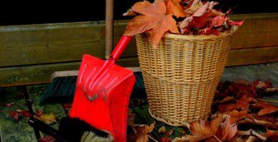 ¿cómo escoger la mejor empresa de limpieza para tu comunidad de vecinos?