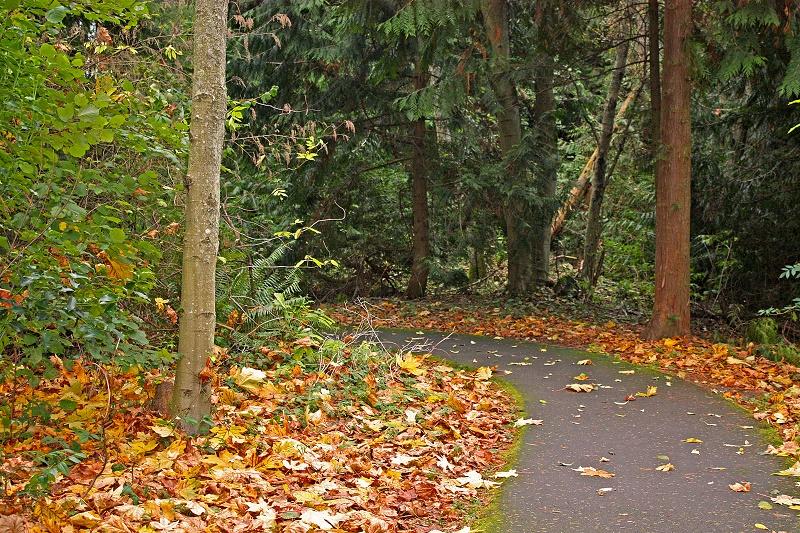 Cómo hacer una correcta limpieza de otoño